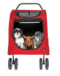 dog buggy